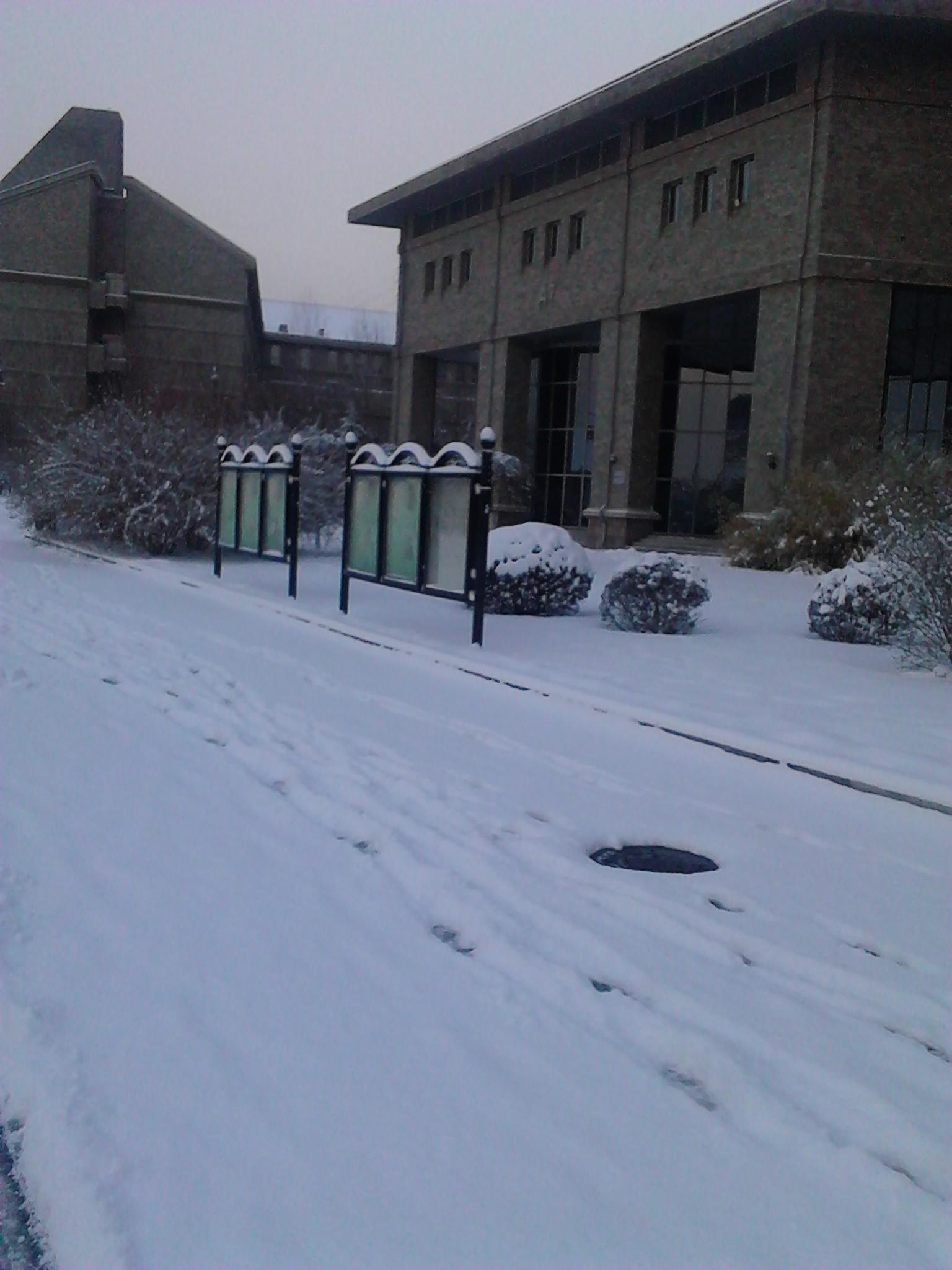外面下雪了_百田龙斗士圈