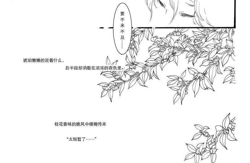 关于桂花的简笔画