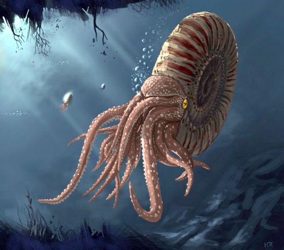 史前最大的生物