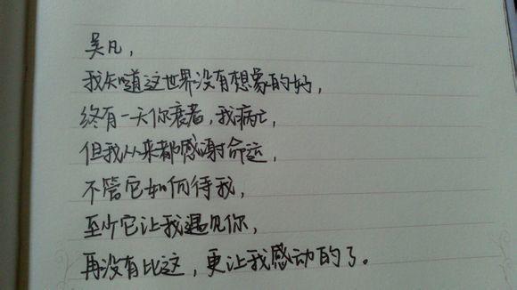 描写树皮的句子