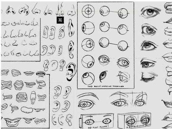 漫画专用画稿纸或绘图纸;             教画漫画05-脸部五官结构; 不