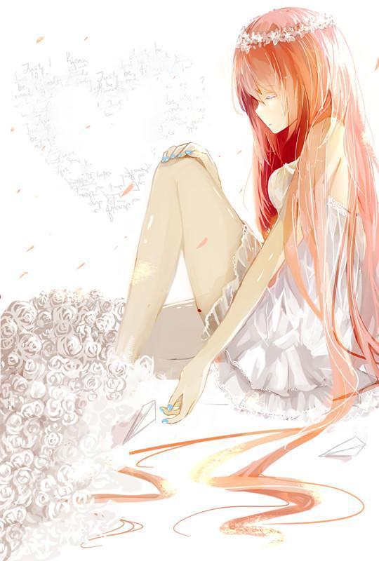蔷薇圈微动画