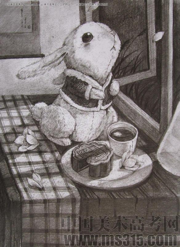 【青溟涯-五喵】可爱的动物桌面