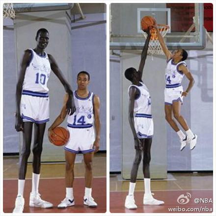 【柒尾】世界上最高的人