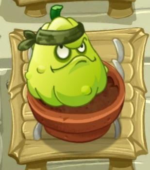 植物大战僵尸窝瓜头像