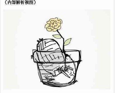 屿婼熙;一只胡萝卜精的故事